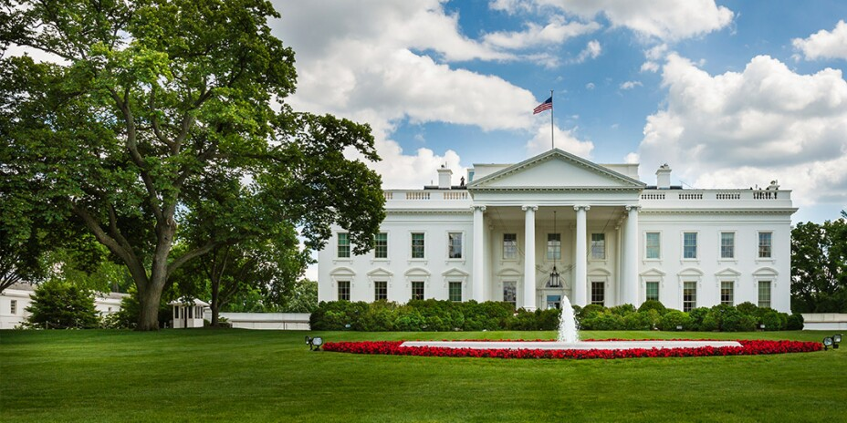 The White House in summer